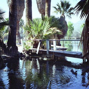 Agua Caliente Tucson AZ Collection