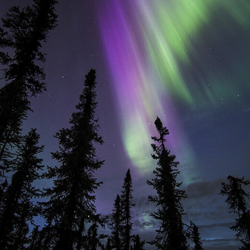Alaskan Aurora Borealis Collection