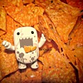 All About DOMO Collection