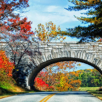 Along the Blue Ridge Parkway Collection