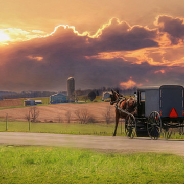 Amish Country Collection