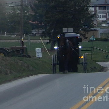 Amish Evenings Collection
