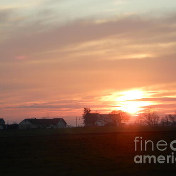 Amish Mornings Collection