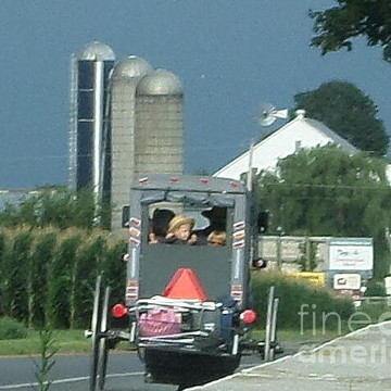 Amish Summer Collection