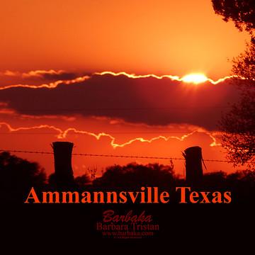 Ammannsville Texas