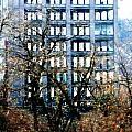 Amsterdam New York Photos Collection