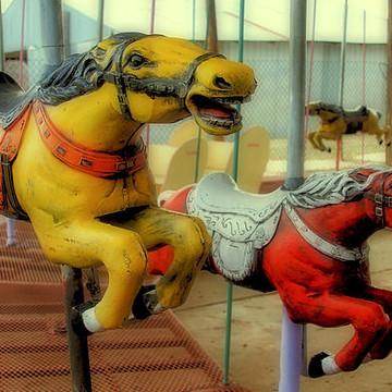Amusement Park Rides Collection