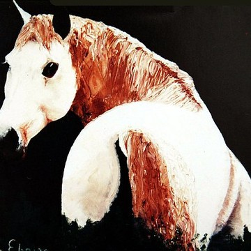 Animal paintings Collection