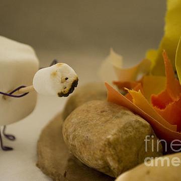 Anthropomorphic Marshmallows Collection