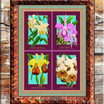 Antique Orchids Quatro on Rusted Metal and Weathered Wood Plank