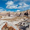 Arizona - Painted Desert - Petrified Forest National Park Collection