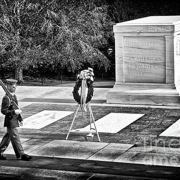 Arlington in B&W Collection