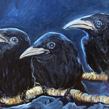Art with Crows & Birds by Katt Yanda Collection