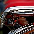 Automotive Ornaments Emblems and Mascots Collection