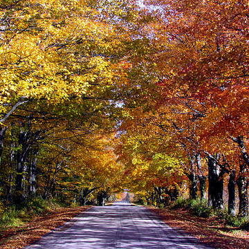 Autumn - Fall In Love With Fall In Door County Collection