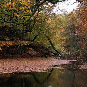 Autumn Colors Denmark 2014 Collection