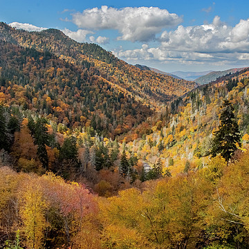 Autumn in the Mountains Collection