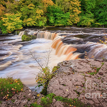 Aysgarth Collection