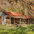 Barns and Old or Derelict Buildings Collection