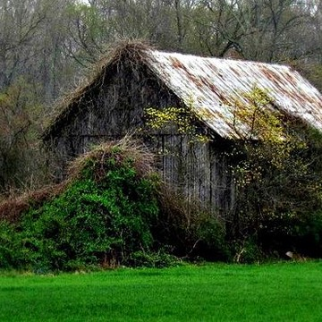 Barns and rural life Collection