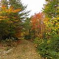Baxter State Park Collection