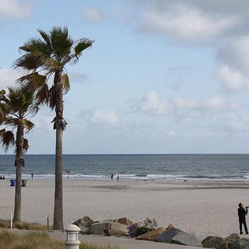 Beach Scenes Collection