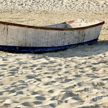 Beaches and shores Collection