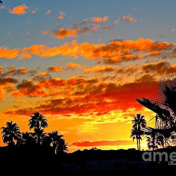 Beautiful Sunsets and sunrises Collection