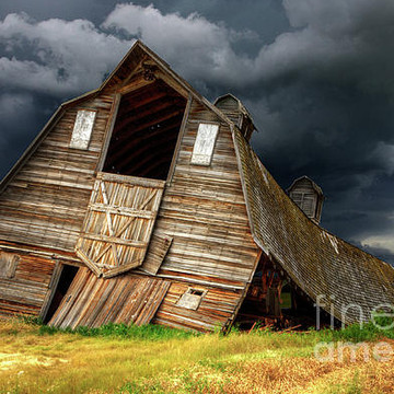 Beauty Of Barns Collection