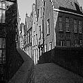 Belgium Collection