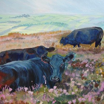 Best Selling Dartmoor Paintings Collection