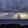 Big Island Landscapes Collection