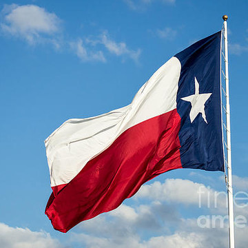 Big State of Texas Collection