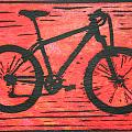 Bike 10 Collection