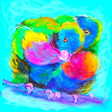 Bird paintings Collection