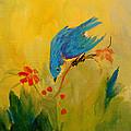 BIRDS - Small Birds Collection