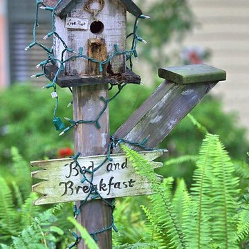 Birds and Birdhouses Collection