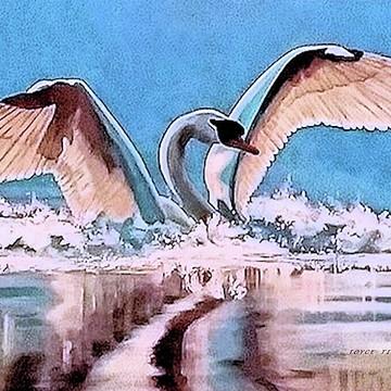 Birds Of Nature