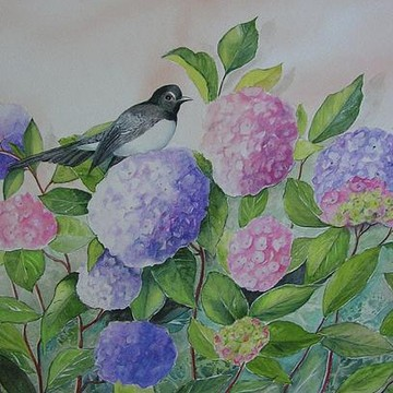 Birds Paintings Collection