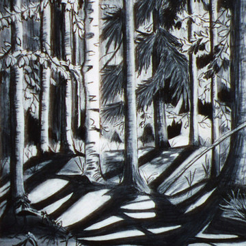 Black and White Art Collection