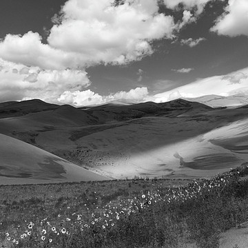 Black and White Landscapes Collection