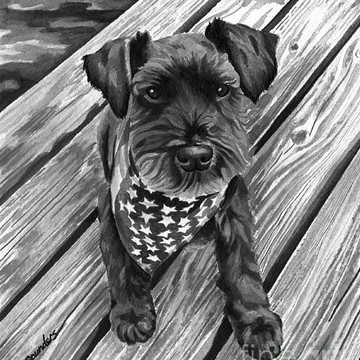 Black and White Pet Portraits Collection