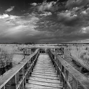Black and white photography Collection