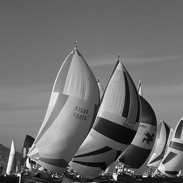 Black and White Sailboat Racing Collection