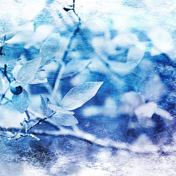 Blue Art for a Relaxed Atmosphere Collection