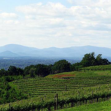 Blue Ridge Mountains Collection