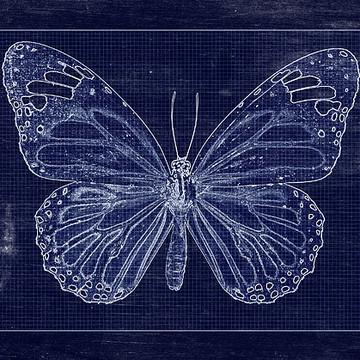 Blueprints Collection