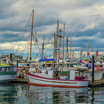 Boats Harbors Marine Art