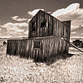 Bodie Ghost Town Collection