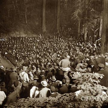Bohemian Grove Collection